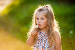 Χαριτωμένο μικρό κορίτσι που φυσά την πικραλίδα Στοκ Φωτογραφία