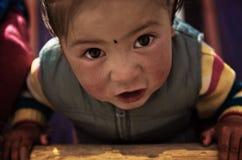 Χαριτωμένο μικρό κορίτσι της βόρειας Ινδίας στοκ φωτογραφίες με δικαίωμα ελεύθερης χρήσης