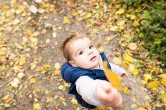 Χαριτωμένο μικρό παιδί έξω στη φύση μια ηλιόλουστη ημέρα Στοκ Φωτογραφίες