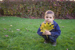 Χαριτωμένο μικρό παιδί που κρατά τα ζωηρόχρωμα φύλλα Στοκ Εικόνα