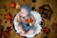 Χαριτωμένο νεογέννητο αγοράκι, που κοιμάται με τα φύλλα φθινοπώρου σε ένα καλάθι α στοκ φωτογραφία