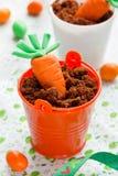 Χαριτωμένο Πάσχα μεταχειρίζεται για τη διακοσμητική σοκολάτα BRI καρότων ζάχαρης παιδιών Στοκ Φωτογραφία