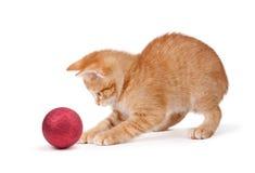 Χαριτωμένο πορτοκαλί παιχνίδι γατακιών με μια διακόσμηση Χριστουγέννων στο λευκό Στοκ εικόνες με δικαίωμα ελεύθερης χρήσης