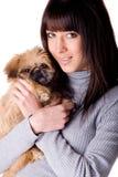 χαριτωμένο πορτρέτο σκυλιών στοκ φωτογραφίες