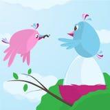 Χαριτωμένο πουλί που ταΐζει το σύντροφό της δεδομένου ότι επωάζει το αυγό απεικόνιση αποθεμάτων
