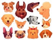 χαριτωμένο πρόσωπο σκυλιώ Κατοικίδια ζώα κουταβιών, φυλή ζώων σκυλιών και διανυσματικό σύνολο απεικόνισης κεφαλιών κουταβιών διανυσματική απεικόνιση