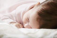 χαριτωμένο ροζ μωρών Στοκ Εικόνα