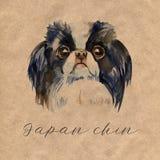 Χαριτωμένο σκυλί - ιαπωνικό πηγούνι απεικόνιση watercolor που απομονώνεται διανυσματική απεικόνιση
