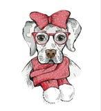 Χαριτωμένο σκυλί κοριτσιών σε ένα χειμερινό μαντίλι και κόκκινο τόξο στο κεφάλι του Στοκ εικόνες με δικαίωμα ελεύθερης χρήσης