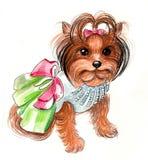 χαριτωμένο σκυλί λίγα Στοκ φωτογραφία με δικαίωμα ελεύθερης χρήσης