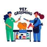 Χαριτωμένο σκυλί στο σαλόνι groomer Δύο νέα κορίτσια που κουρεύουν και που κτενίζουν spitz Προσοχή σκυλιών, καλλωπισμός, υγιεινή, ελεύθερη απεικόνιση δικαιώματος