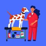 Χαριτωμένο σκυλί στο σαλόνι groomer Δύο νέα κορίτσια που κουρεύουν και που κτενίζουν spitz Προσοχή σκυλιών, καλλωπισμός, υγιεινή, απεικόνιση αποθεμάτων