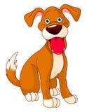 Χαριτωμένο σκυλί χαμόγελου Στοκ φωτογραφία με δικαίωμα ελεύθερης χρήσης