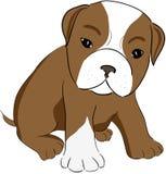 χαριτωμένο σκυλί Στοκ Εικόνα
