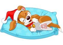 Χαριτωμένο σκυλάκι Χριστουγέννων Στοκ Εικόνες