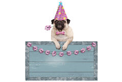 Χαριτωμένο σκυλί κουταβιών μαλαγμένου πηλού με τη ρόδινη ένωση καπέλων κομμάτων στο κενό μπλε ξύλινο σημάδι με τα λουλούδια Στοκ Εικόνα