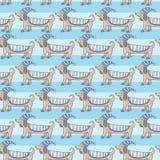 Χαριτωμένο σχέδιο λωρίδων σκυλιών Dachshund Στοκ φωτογραφίες με δικαίωμα ελεύθερης χρήσης