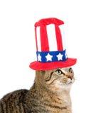 χαριτωμένο τέταρτο καπέλο Ιούλιος γατών Στοκ Εικόνα