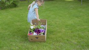 Χαριτωμένο τράβηγμα μικρών κοριτσιών cardbox με τα λουλούδια στη χλόη φιλμ μικρού μήκους