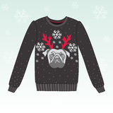 Χαριτωμένο χειμερινό πουλόβερ με το σκυλί Στοκ φωτογραφίες με δικαίωμα ελεύθερης χρήσης