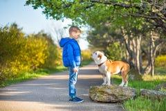 Χαριτωμένο όμορφο μοντέρνο αγόρι που απολαμβάνει το ζωηρόχρωμο πάρκο φθινοπώρου με το κόκκινο και άσπρο αγγλικό σκυλί ταύρων καλύ στοκ εικόνες