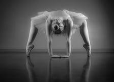 Χαριτωμένο ballerina που θερμαίνει σε γραπτό στοκ εικόνα