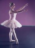 Χαριτωμένο ballerina που στέκεται στο ρόδινο tutu στοκ φωτογραφίες