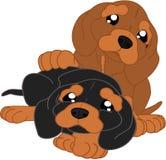 χαριτωμένο dachshund κινούμενων σ&ch Στοκ φωτογραφίες με δικαίωμα ελεύθερης χρήσης