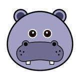 χαριτωμένο hippo προσώπου Στοκ Φωτογραφίες