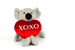 Χαριτωμένο koala με το κόκκινο xoxo καρδιών Στοκ Φωτογραφία