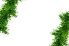 Χαρούμενα Χριστούγεννα και υπόβαθρο καλής χρονιάς με τους κλάδους έλατου που απομονώνεται στο άσπρο υπόβαθρο σχέδιο σύγχρονο Καθο Στοκ Εικόνες
