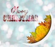 Χαρούμενα Χριστούγεννα στο μπλε υπόβαθρο bokeh με τα φύλλα Στοκ εικόνα με δικαίωμα ελεύθερης χρήσης