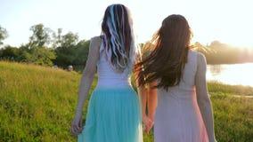 Χαρούμενος έφηβος κοριτσιών που τρέχει μαζί κατά μήκος του χορτοτάπητα κατά μήκος της λίμνης στην ακτίνα ήλιων απόθεμα βίντεο