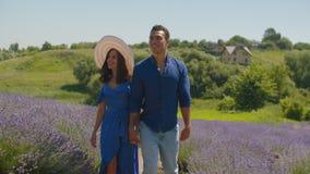Χαρούμενος πολυφυλετικός περίπατος ζευγών lavender στον τομέα απόθεμα βίντεο