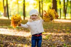 Χαρούμενο μικρό κορίτσι στο πάρκο το φθινόπωρο με τα φύλλα στα χέρια τους Στοκ Φωτογραφία