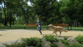 Χαρούμενο μικρό παιδί που τρέχει με το καθαρής φυλής σκυλί του απόθεμα βίντεο