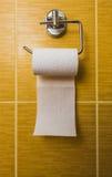 Χαρτί τουαλέτας στο βερνικωμένο κεραμίδι Στοκ Εικόνες