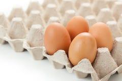 Χαρτοκιβώτια αυγών που συσκευάζουν στο άσπρο υπόβαθρο Στοκ Εικόνες