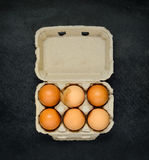 Χαρτοκιβώτιο αυγών με τα οργανικά αυγά Στοκ Εικόνες