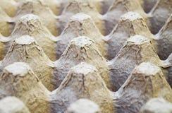 Χαρτοκιβώτιο αυγών Στοκ Εικόνες