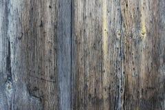 χαρτόνι παλαιό Στοκ φωτογραφία με δικαίωμα ελεύθερης χρήσης