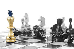 Χαρτόνι σκακιού στοκ εικόνες με δικαίωμα ελεύθερης χρήσης