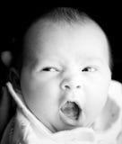 χασμουρητό Στοκ φωτογραφία με δικαίωμα ελεύθερης χρήσης