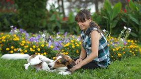 Χαλάρωση γυναικών με το σκυλί απόθεμα βίντεο