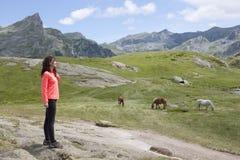 Χαλάρωση γυναικών στο βουνό με τα άλογα στοκ εικόνα με δικαίωμα ελεύθερης χρήσης