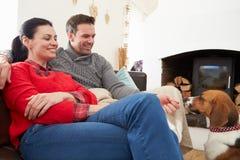 Χαλάρωση ζεύγους στο σπίτι με το σκυλί της Pet στοκ φωτογραφίες με δικαίωμα ελεύθερης χρήσης