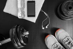 χαλάρωση ικανότητας έννοιας σφαιρών pilates Αθλητικός εξοπλισμός Στοκ Εικόνες