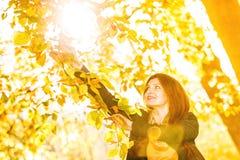 Χαλάρωση κοριτσιών μόδας γυναικών που περπατά στο φθινοπωρινό πάρκο, υπαίθριο Στοκ Φωτογραφίες