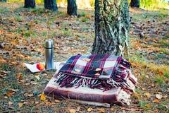 Χαλάρωση δύο καρό στα ξύλα για δύο και το πρόγευμα Στοκ φωτογραφίες με δικαίωμα ελεύθερης χρήσης