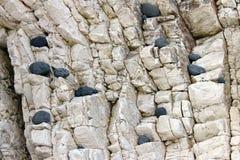 Χαλίκια 2 προσώπου βράχου Στοκ Εικόνες